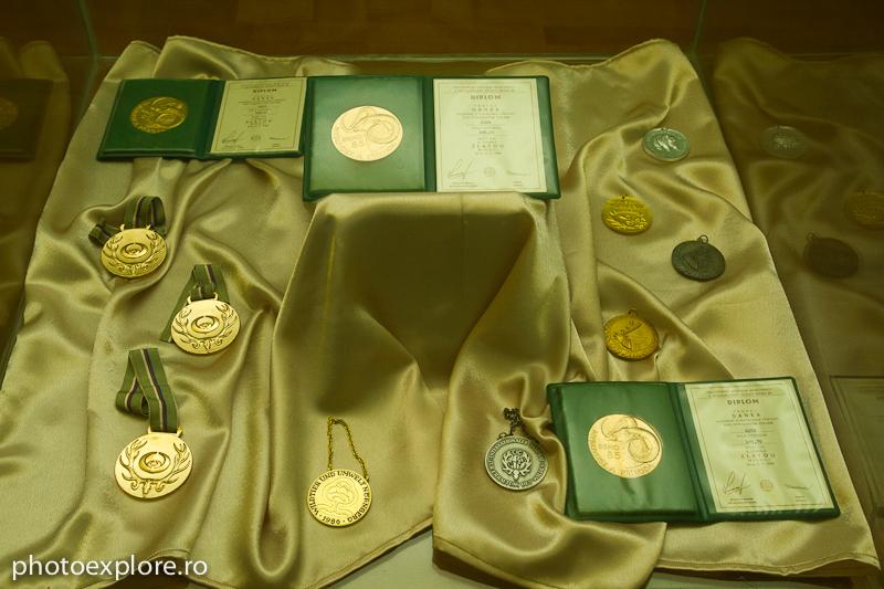 medalii_premii